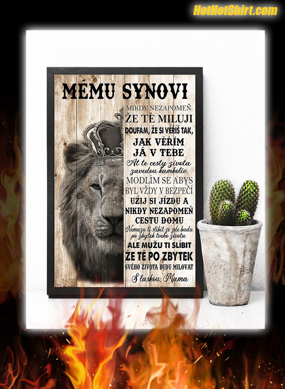 Lev Mému synovi nikdy nezapomeň že tě miluji plakát